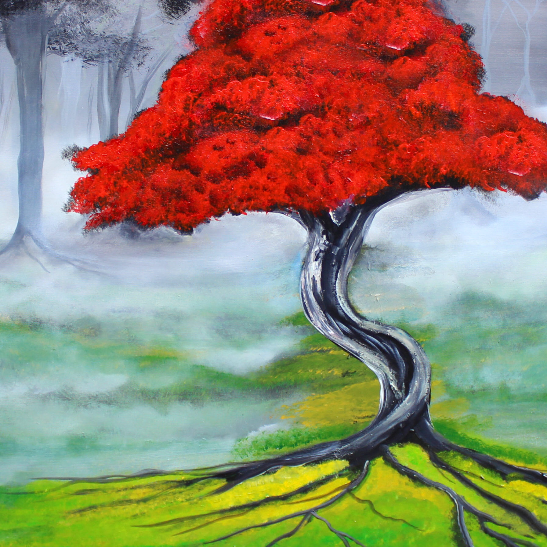 Red-Blossom-tree-2019-scaled-landscape